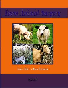 Picture of Farm Animal Surgery