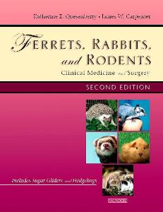 Picture of Ferrets, Rabbits and Rodents: Clinical Medicine & Surgery (2nd Ed)
