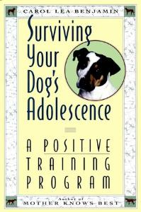 Picture of Surviving Your Dog's Adolecence: A Positive Training Program