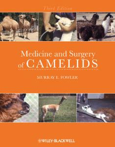 Picture of Medicine and Surgery of Camelids (3rd Ed)