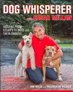 Picture of Dog Whisperer (2nd Ed)
