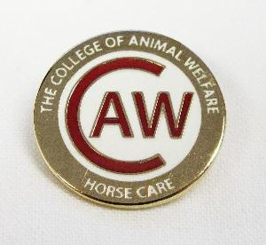 Picture of Horse Care Badge